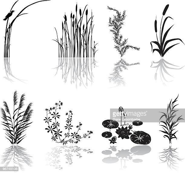 bildbanksillustrationer, clip art samt tecknat material och ikoner med wetlands black silhouette icons with multiple marsh elements and shadows - sumpmark