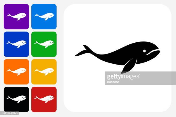 whale icon square button set - whales stock illustrations, clip art, cartoons, & icons