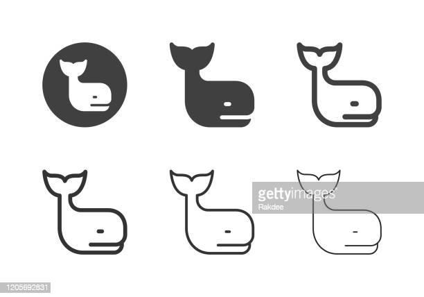 クジラのアイコン - マルチシリーズ - ジンベエザメ点のイラスト素材/クリップアート素材/マンガ素材/アイコン素材