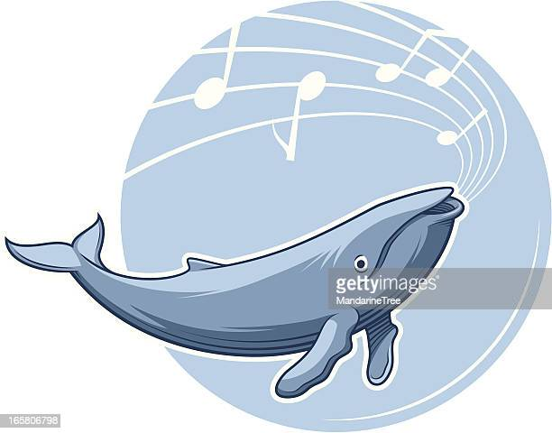 whale song - humpback whale stock illustrations, clip art, cartoons, & icons
