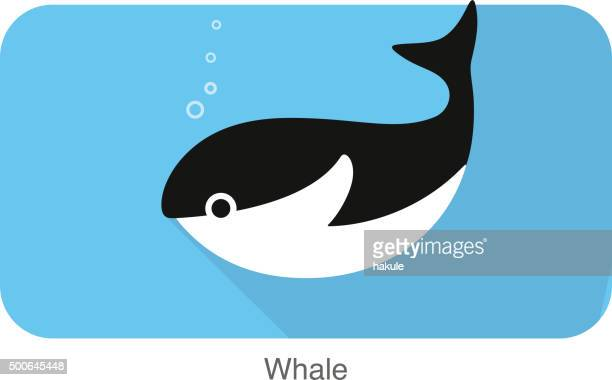 whale under the water, vector - killer whale stock illustrations, clip art, cartoons, & icons