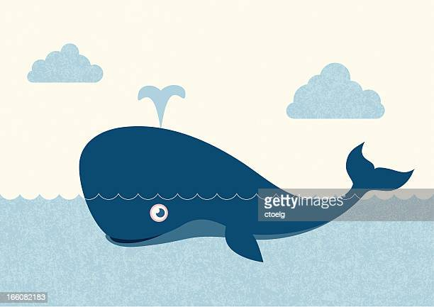illustrations, cliparts, dessins animés et icônes de observation des baleines - baleine