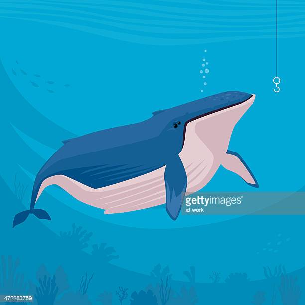 whale - humpback whale stock illustrations, clip art, cartoons, & icons