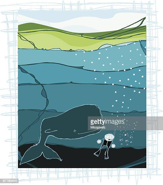whale watching - blue whale stock illustrations, clip art, cartoons, & icons