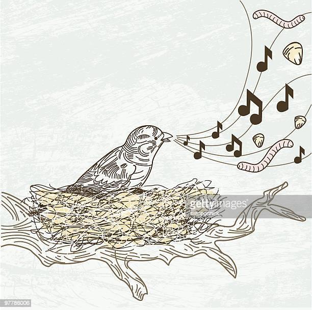 ilustrações de stock, clip art, desenhos animados e ícones de que as aves sing sobre. - canto de passarinho