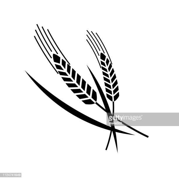ilustraciones, imágenes clip art, dibujos animados e iconos de stock de elemento de diseño de trigo - espiga de trigo