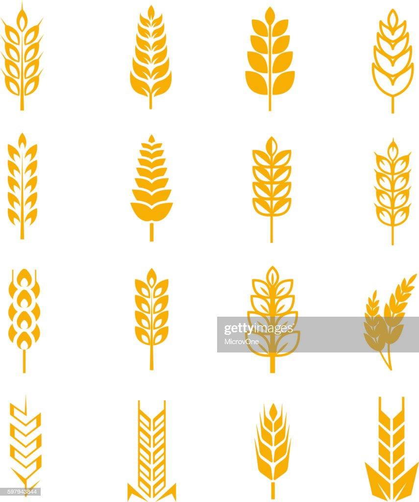 Wheat ears bread vector symbols