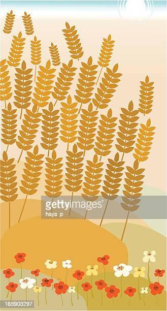 ilustraciones, imágenes clip art, dibujos animados e iconos de stock de trigo campo verano y flores, día de - espiga de trigo