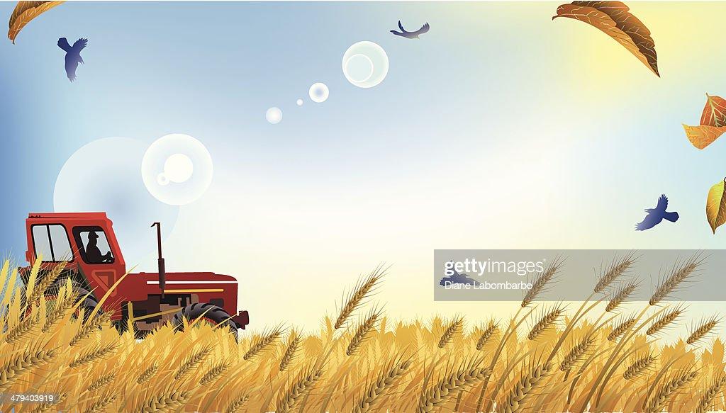 Farm Field Clipart Images, Stock Photos & Vectors | Shutterstock