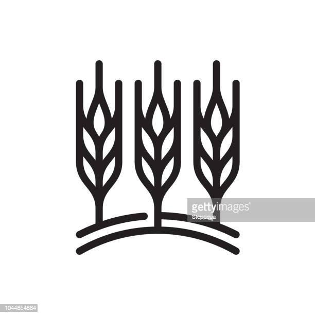 wheat field line icon - ranch stock illustrations