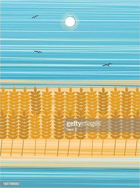 ilustraciones, imágenes clip art, dibujos animados e iconos de stock de campo de trigo en sumer día - espiga de trigo