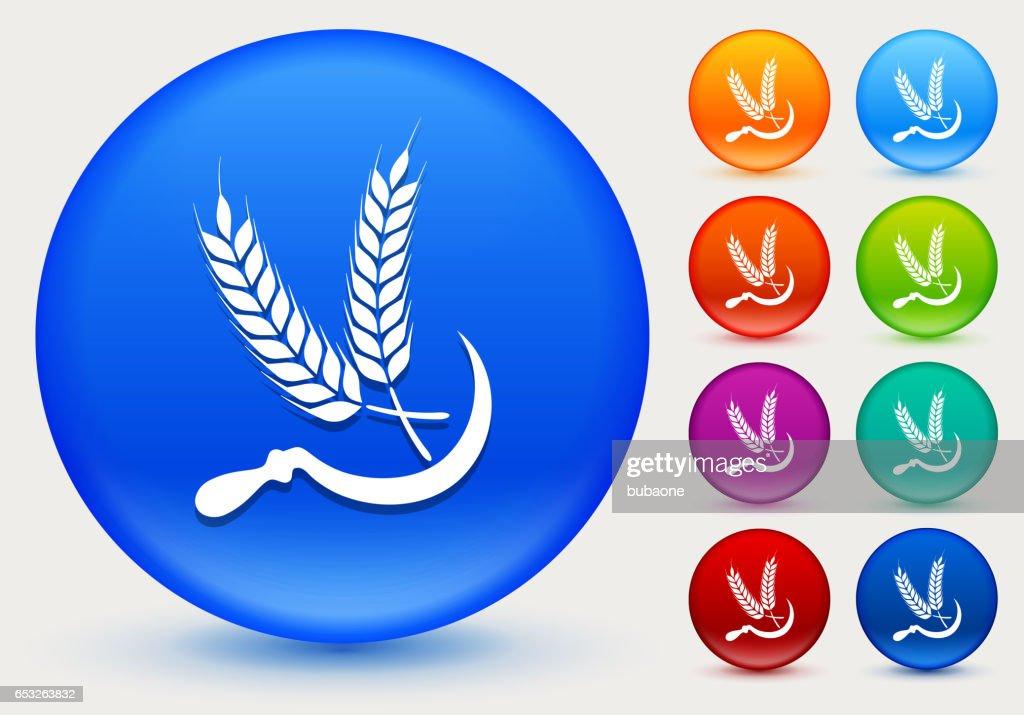 Weizen-Symbol auf glänzenden Farbkreis Tasten : Vektorgrafik