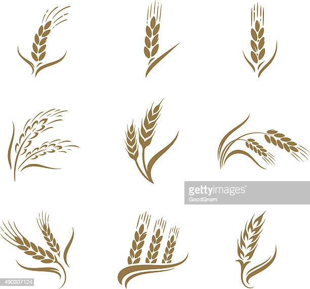 wheat icon set - cereal plant stock illustrations