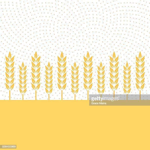 Wheat plantation - VECTOR