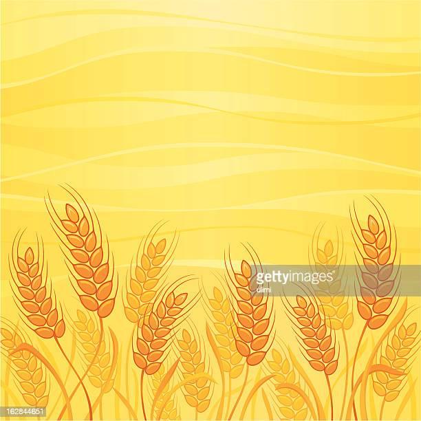 wheat - zea stock illustrations, clip art, cartoons, & icons