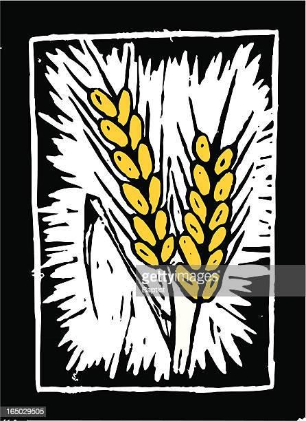 Wheat (vector)