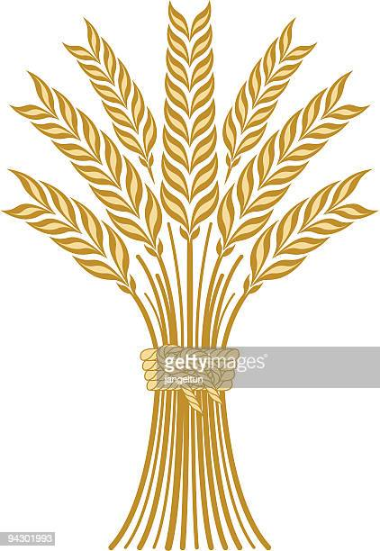 Illustration Of A Sheaf Of Cones Of Wheat Stock Illustration - Illustration  of autumn, grain: 37648957