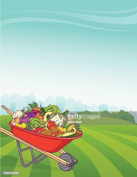 Wheelbarrow Vegetable Background Vertical