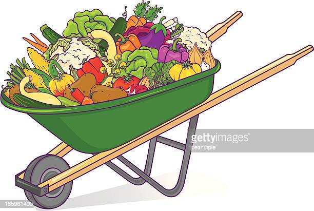 Wheelbarrow with vegetables