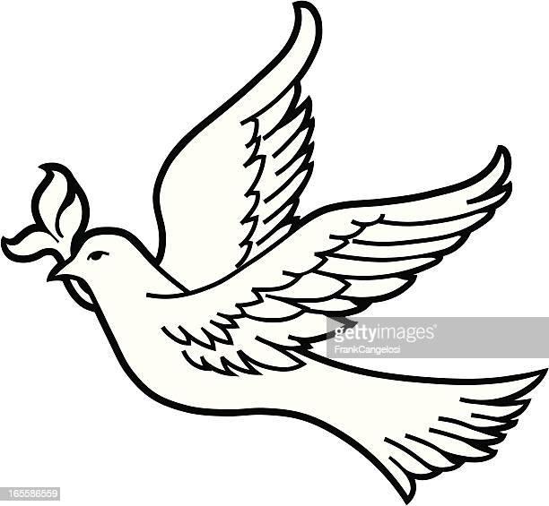 ilustraciones, imágenes clip art, dibujos animados e iconos de stock de dove - rama de olivo