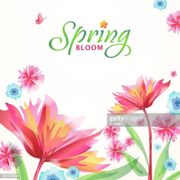 Whimsical Spring Flowers Blooming in Spring