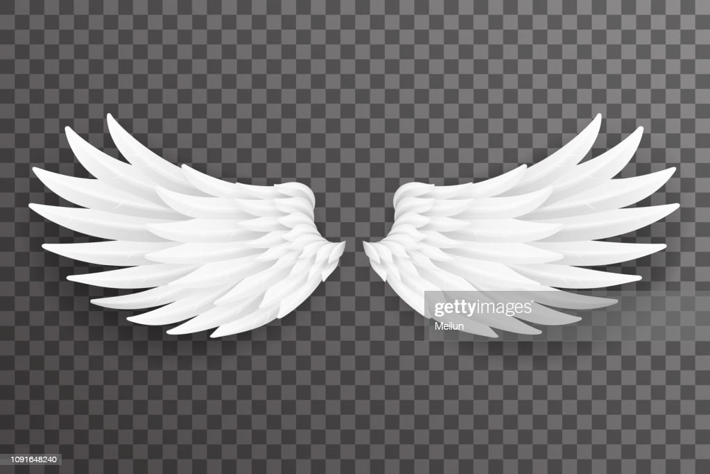 White bird angel fly wings 3d realistic design transparent background vector illustration