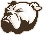 White Bulldog Mascot