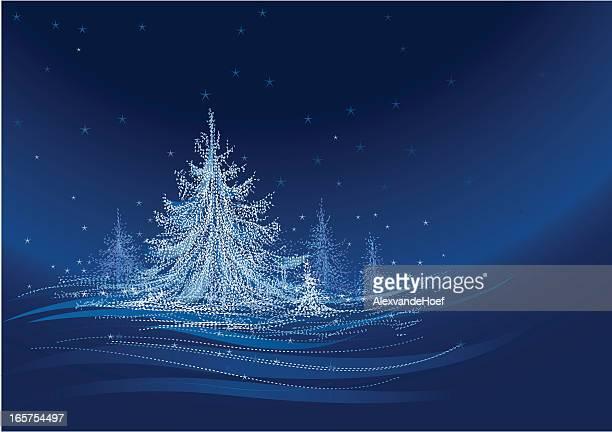 White Christmastree at Night