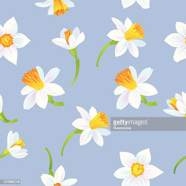 white daffodils pattern - daffodil stock illustrations, clip art, cartoons, & icons