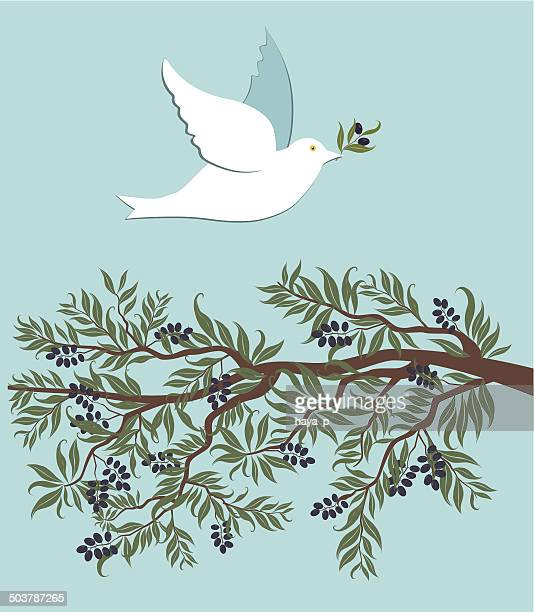 White dove flying over olive branch