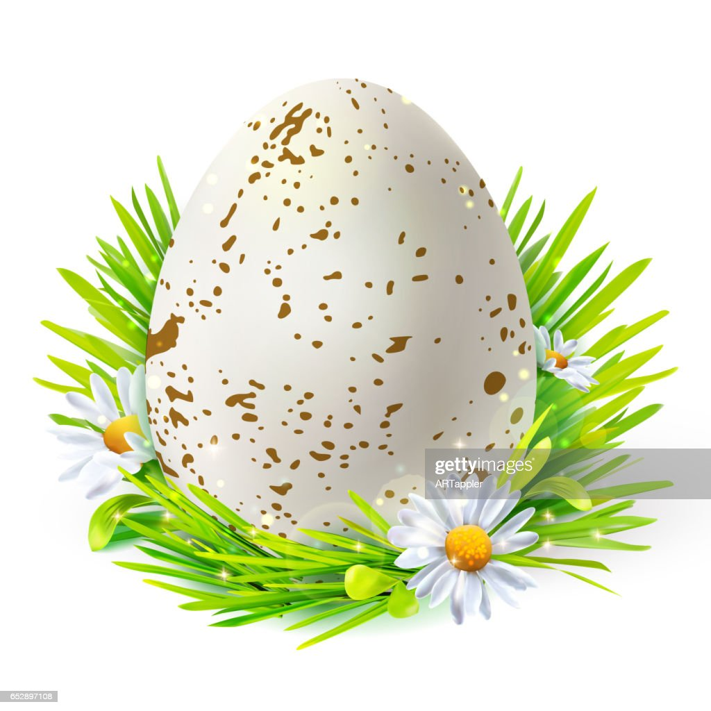 White egg with spots on grass