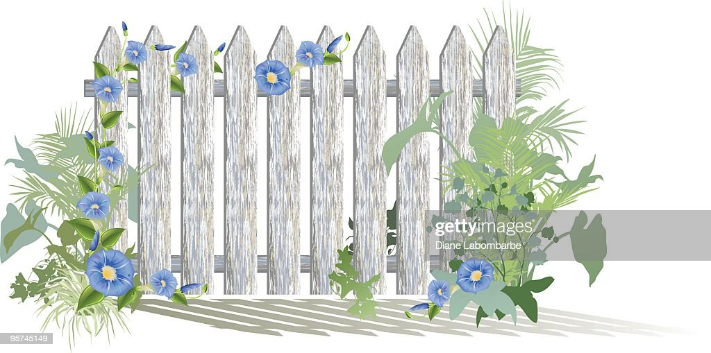 White Fence and Garden