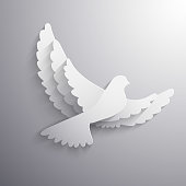 White flying dove abstract illustration - eps10 vector