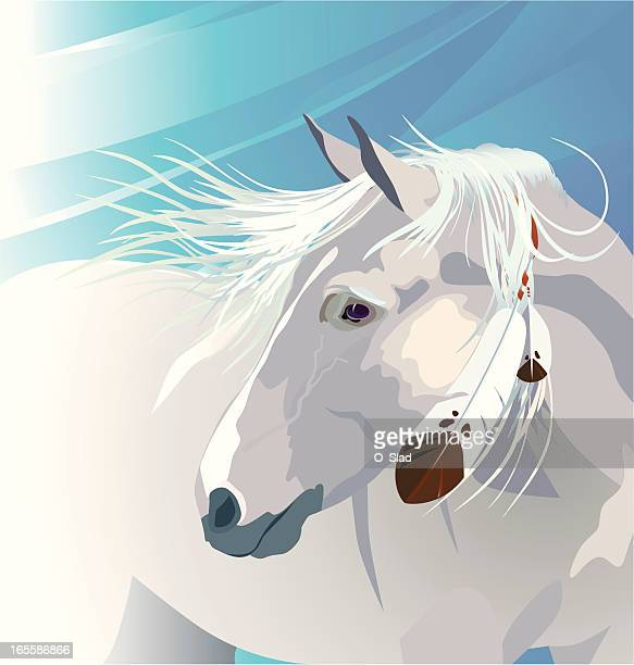 white horse - mustang wild horse stock illustrations, clip art, cartoons, & icons
