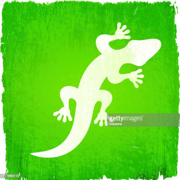 white lizard on green background, with small green lizards - wood stain stock illustrations, clip art, cartoons, & icons