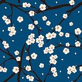 White Plum Blossom Flower on Indigo Blue Background. Vector Illustration