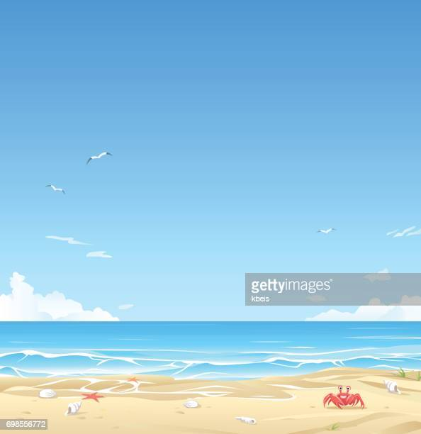 white sand beach - beach stock illustrations