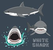 White Shark Cartoon Vector Illustration