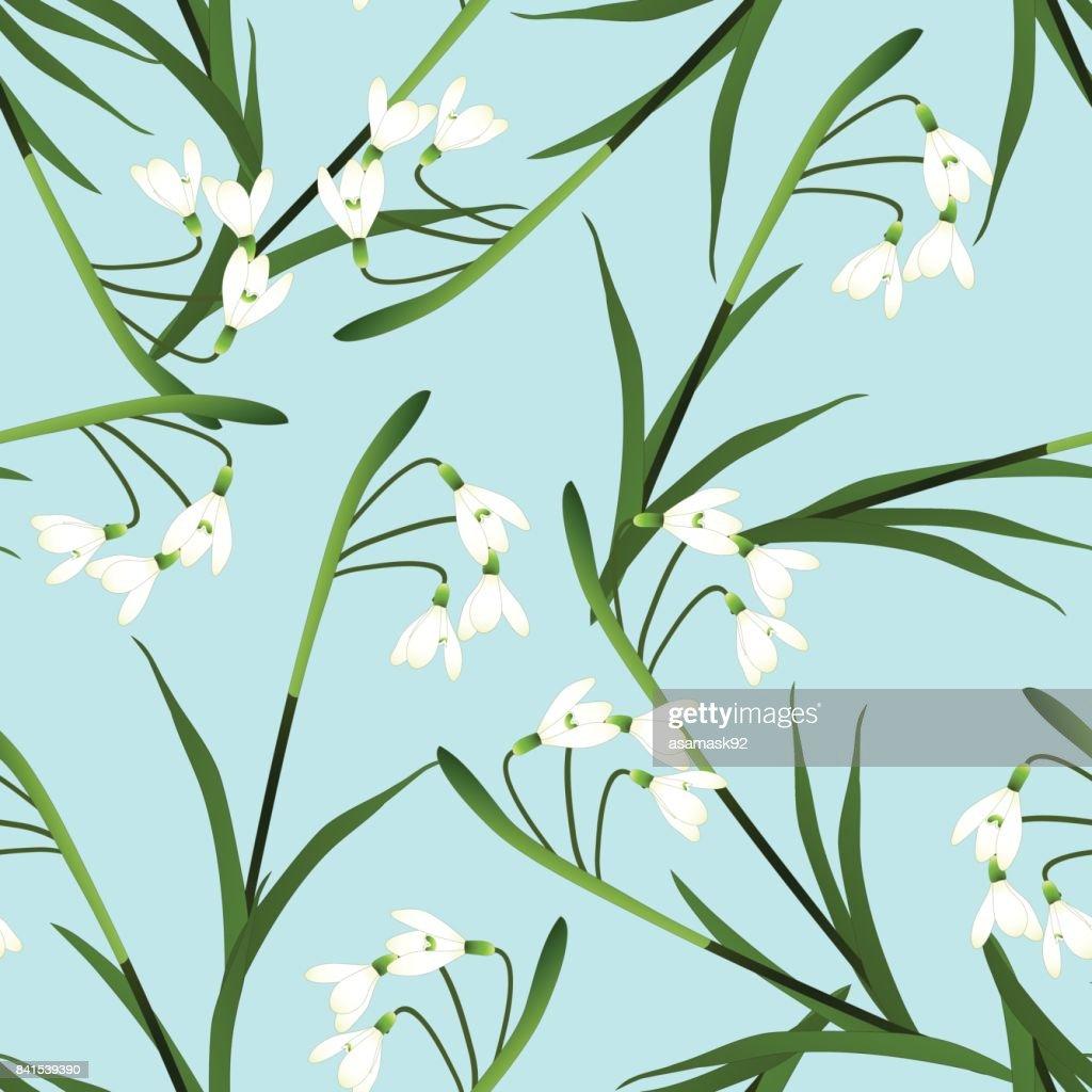 White Snowdrop Flower on Light Blue Background. Vector Illustration
