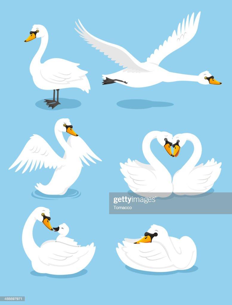 White Swan Wing Water Animal Bird Elegance Grace Set : stock illustration