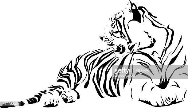 ilustraciones, imágenes clip art, dibujos animados e iconos de stock de tigre blanco - tigre