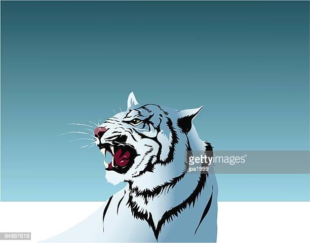 30 illustrazioni stock clip art cartoni animati e icone di tigre
