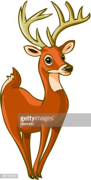 whitetailed 鹿 - named animal点のイラスト素材/クリップアート素材/マンガ素材/アイコン素材
