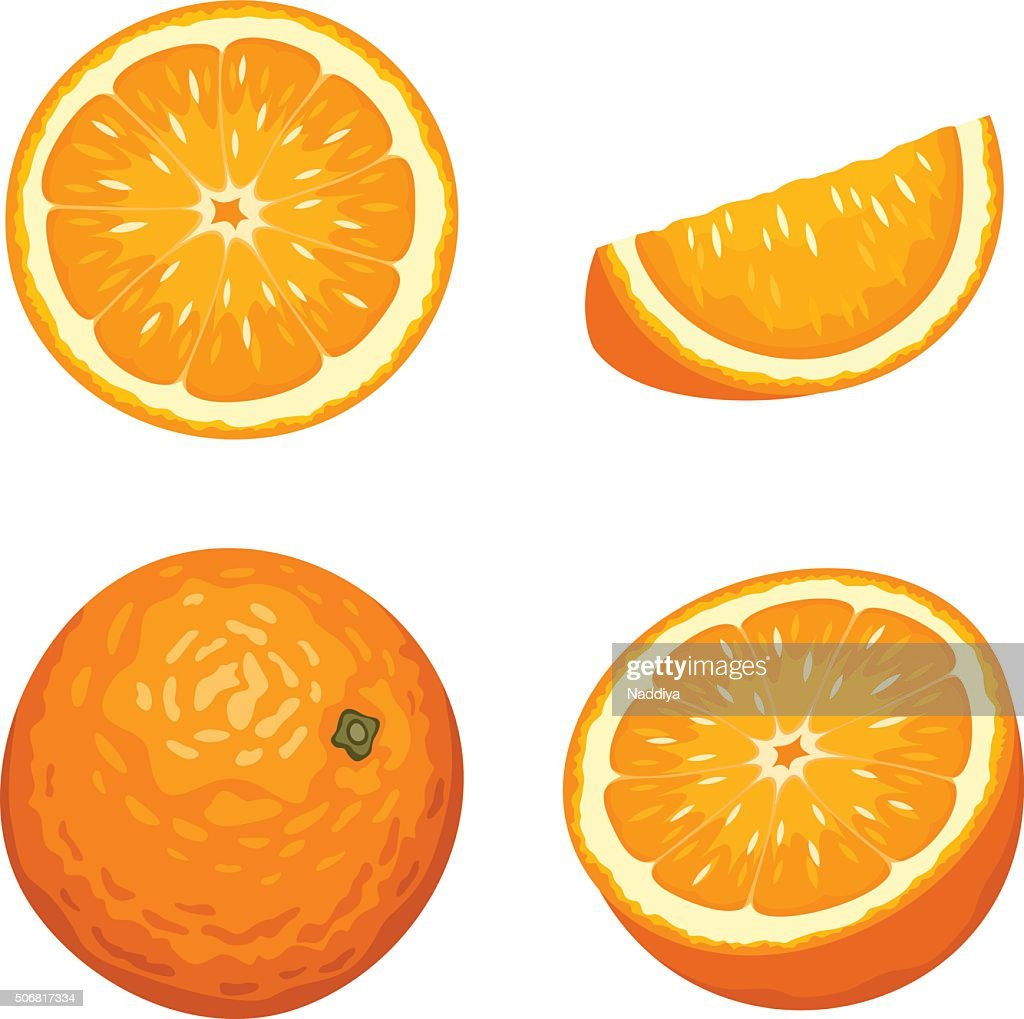 Whole and sliced orange fruits isolated on white. Vector illustration.