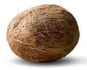 Whole coconut on a white background. 3D vector. High detailed realistic illustration