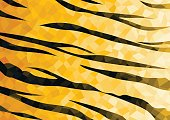 Wild animal abstract pattern background or texture, Tiger.