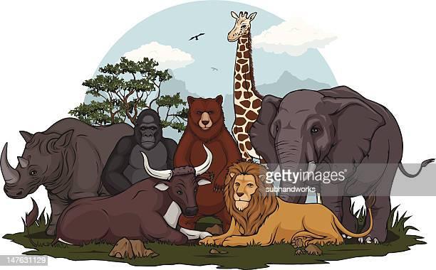 ilustraciones, imágenes clip art, dibujos animados e iconos de stock de colección de animales salvajes - oso pardo