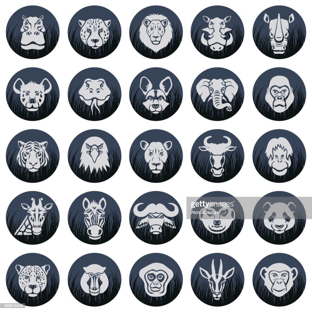Wild Animal Face Icons : stock illustration