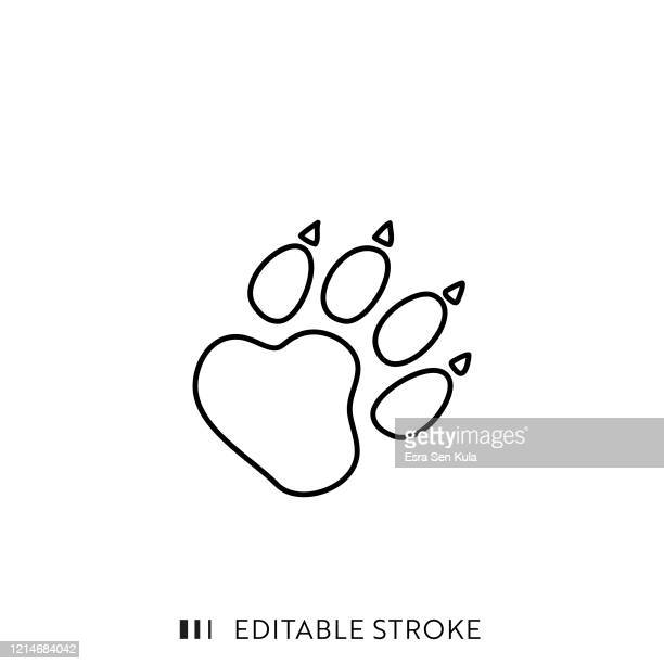 wild animal footpath line icon with editable stroke and pixel perfect. - bear tracks stock illustrations