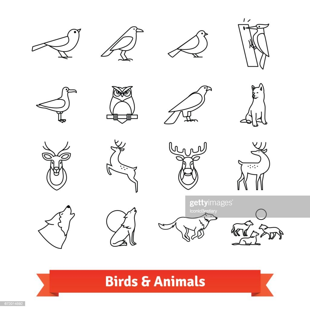 Wild animals and birds thin line art icons set